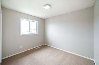 Photo 29: 12036 19 Avenue in Edmonton: Zone 55 House for sale : MLS®# E4196970