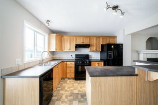 Photo 21: 12036 19 Avenue in Edmonton: Zone 55 House for sale : MLS®# E4196970