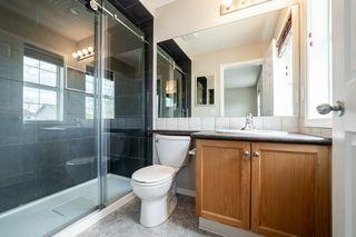 Photo 25: 12036 19 Avenue in Edmonton: Zone 55 House for sale : MLS®# E4196970