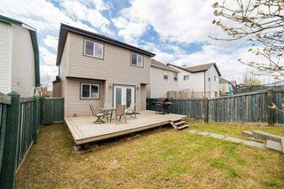 Photo 44: 12036 19 Avenue in Edmonton: Zone 55 House for sale : MLS®# E4196970