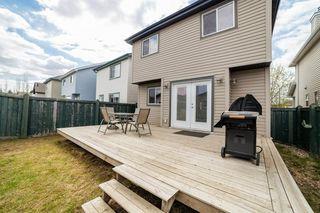 Photo 41: 12036 19 Avenue in Edmonton: Zone 55 House for sale : MLS®# E4196970