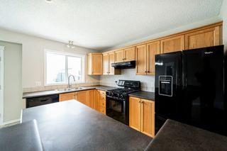Photo 15: 12036 19 Avenue in Edmonton: Zone 55 House for sale : MLS®# E4196970