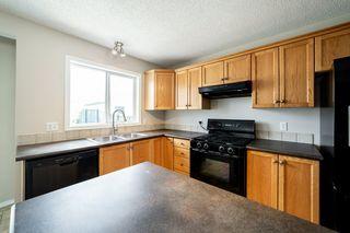 Photo 16: 12036 19 Avenue in Edmonton: Zone 55 House for sale : MLS®# E4196970