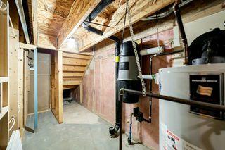 Photo 38: 12036 19 Avenue in Edmonton: Zone 55 House for sale : MLS®# E4196970