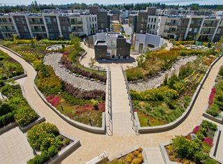 Photo 24: 316 15850 26 Avenue in Surrey: Grandview Surrey Condo for sale (South Surrey White Rock)  : MLS®# R2469816