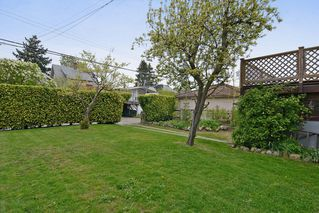 Photo 11: 243 East 20th Avenue in Vancouver East: Home for sale : MLS®# V1005618