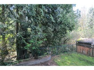 "Photo 14: 24310 100B Avenue in Maple Ridge: Albion House for sale in ""ALBION"" : MLS®# V1058134"