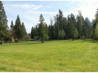 """Photo 3: 21144 20 Avenue in Langley: Campbell Valley House for sale in """"South Langley/Campbell Valley"""" : MLS®# F1409207"""