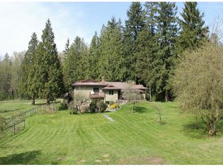 """Photo 4: 21144 20 Avenue in Langley: Campbell Valley House for sale in """"South Langley/Campbell Valley"""" : MLS®# F1409207"""
