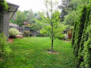 Photo 27: 1292B Martin Pl in COURTENAY: CV Courtenay City Half Duplex for sale (Comox Valley)  : MLS®# 672425