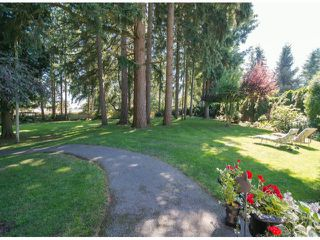 Photo 4: 13885 18TH Avenue in Surrey: Sunnyside Park Surrey House for sale (South Surrey White Rock)  : MLS®# F1431118