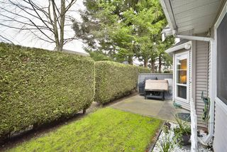 "Photo 9: 8 7127 124 Street in Surrey: West Newton Townhouse for sale in ""CAMELLIA WYNDE"" : MLS®# R2023947"
