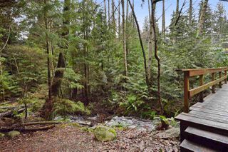 "Photo 20: 5545 DEERHORN Lane in North Vancouver: Grouse Woods House for sale in ""GROUSEWOODS"" : MLS®# R2031482"