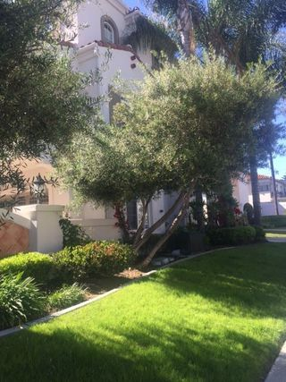 Photo 3: HILLCREST Condo for sale : 3 bedrooms : 3620 INDIANA ST #105 in San Diego