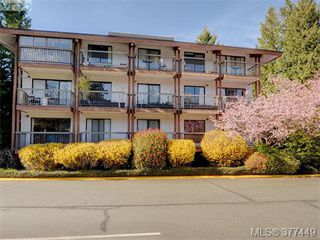 Photo 20: 111 1005 McKenzie Ave in VICTORIA: SE Quadra Condo for sale (Saanich East)  : MLS®# 757826