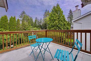 Photo 17: 21591 CHERRINGTON Avenue in Maple Ridge: West Central House for sale : MLS®# R2168742