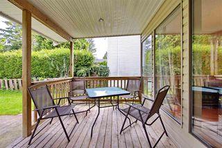 Photo 12: 21591 CHERRINGTON Avenue in Maple Ridge: West Central House for sale : MLS®# R2168742