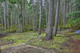 Photo 33: 1040 Finlayson Arm Road in VICTORIA: La Goldstream Residential for sale (Langford)  : MLS®# 359239