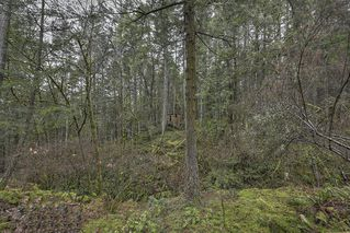 Photo 11: 1040 Finlayson Arm Road in VICTORIA: La Goldstream Residential for sale (Langford)  : MLS®# 359239