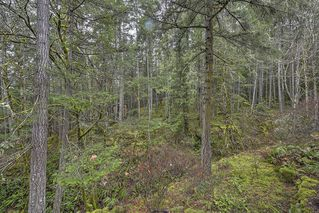 Photo 29: 1040 Finlayson Arm Road in VICTORIA: La Goldstream Residential for sale (Langford)  : MLS®# 359239