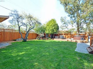Photo 19: 2490 Dryfe Street in VICTORIA: OB Henderson Single Family Detached for sale (Oak Bay)  : MLS®# 390248