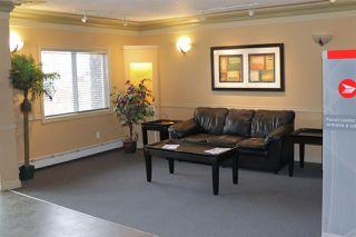 Photo 4: 408 70 WOODSMERE Close: Fort Saskatchewan Condo for sale : MLS®# E4137343