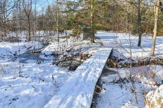 Photo 19: 41 Forest Park Road: Orangeville House (Sidesplit 4) for sale : MLS®# W4330792