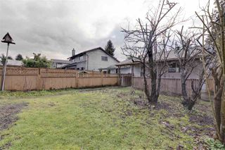 Photo 7: 1939 GRANT Avenue in Port Coquitlam: Glenwood PQ House 1/2 Duplex for sale : MLS®# R2330940