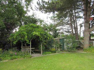 Photo 17: 10104 HYMAR Drive in Chilliwack: Fairfield Island House for sale : MLS®# R2331916
