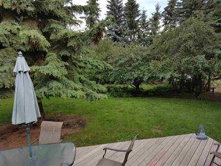 Photo 16: 513 MCLEOD Avenue: Spruce Grove House for sale : MLS®# E4147036