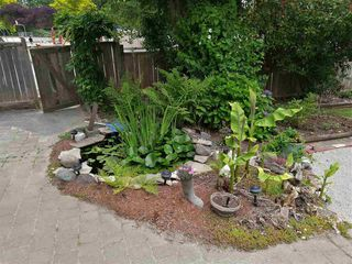 Photo 7: 953 E 13TH Street in North Vancouver: Boulevard House for sale : MLS®# R2368818
