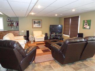 Photo 19: 5014 46 Street: Sedgewick House for sale : MLS®# E4170841