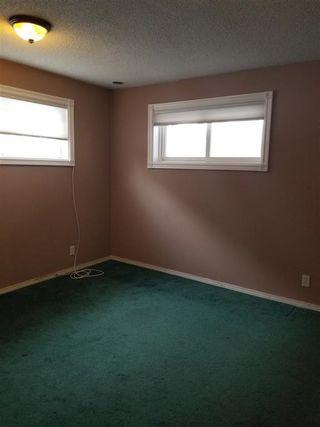 Photo 11: 11835 51 Street NW in Edmonton: Zone 06 House for sale : MLS®# E4187428