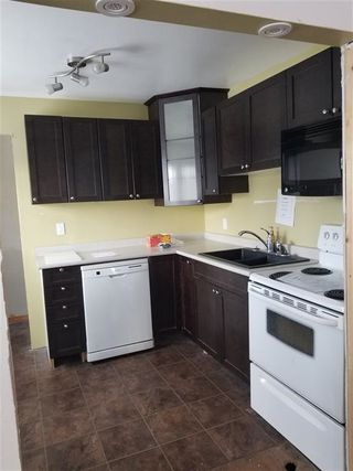 Photo 4: 11835 51 Street NW in Edmonton: Zone 06 House for sale : MLS®# E4187428