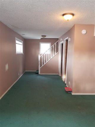 Photo 9: 11835 51 Street NW in Edmonton: Zone 06 House for sale : MLS®# E4187428