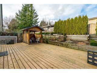 Photo 19: 32991 2ND AVENUE in Mission: Mission BC House for sale : MLS®# R2426370