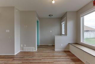 Photo 14: 3051 TRELLE Crescent in Edmonton: Zone 14 House for sale : MLS®# E4217189