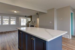 Photo 13: 3051 TRELLE Crescent in Edmonton: Zone 14 House for sale : MLS®# E4217189