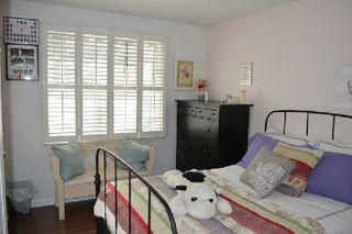 Photo 7: 50 Meldazy Drive in Toronto: Bendale House (Bungalow) for sale (Toronto E09)  : MLS®# E2816982