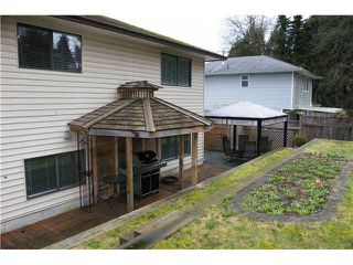 Photo 18: 22105 RIVER Road in Maple Ridge: West Central House for sale : MLS®# V1107707