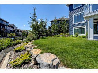 Photo 36: 35 AUBURN SOUND Cove SE in Calgary: Auburn Bay House for sale : MLS®# C4028300