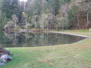 Photo 6: 66044 OGILVIEW Drive in Hope: Hope Kawkawa Lake Land for sale : MLS®# R2012028