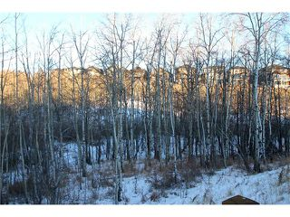 Photo 21: 334 ASCOT Circle SW in Calgary: Aspen Woods House for sale : MLS®# C4047112