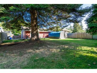 "Photo 26: 10125 HELEN Drive in Surrey: Cedar Hills House for sale in ""ST HELENS"" (North Surrey)  : MLS®# R2112637"