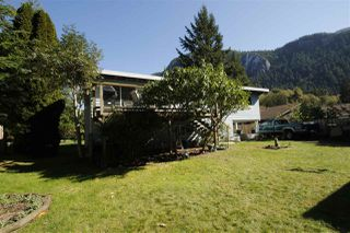 Photo 15: 1828 CEDAR Drive in Squamish: Valleycliffe House for sale : MLS®# R2113673