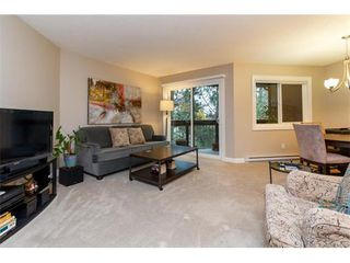 Photo 3: 506 69 W Gorge Rd in VICTORIA: SW Gorge Condo for sale (Saanich West)  : MLS®# 747328