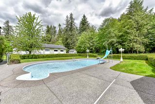 Photo 11: 4128 232 Street in Langley: Campbell Valley House for sale : MLS®# R2170663