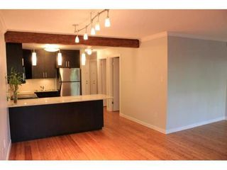 Photo 1: 106 621 6TH East Ave in Vancouver East: Condo for sale : MLS®# V858078