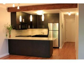 Photo 3: 106 621 6TH East Ave in Vancouver East: Condo for sale : MLS®# V858078