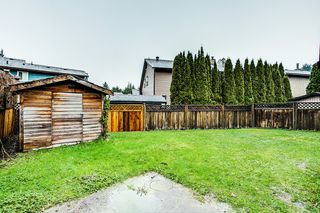 Photo 20: 21575 Cherrington in Maple Ridge: West Central House for lease